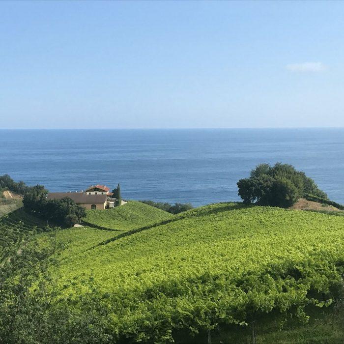 Een wijnfan in… Baskenland