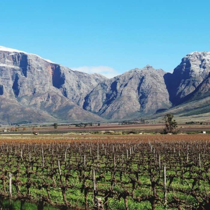 Alcoholverbod in Zuid-Afrika opgeheven